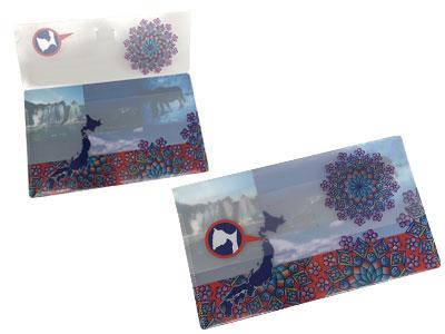 オリジナル抗菌マスクケース